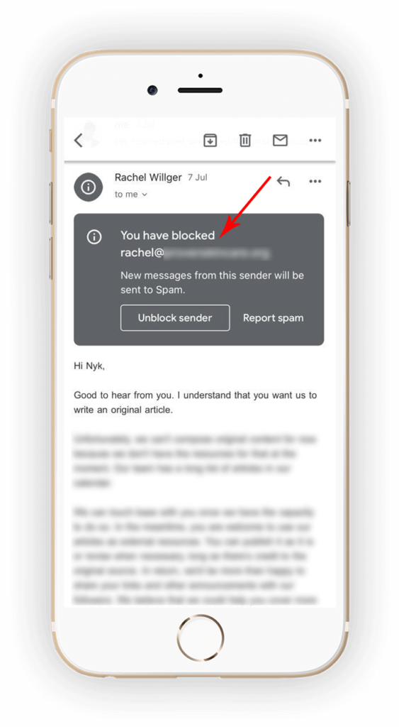 Email Blocked Popup